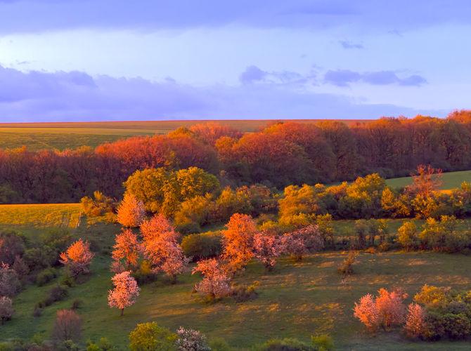 Pohled z terasy při západu slunce