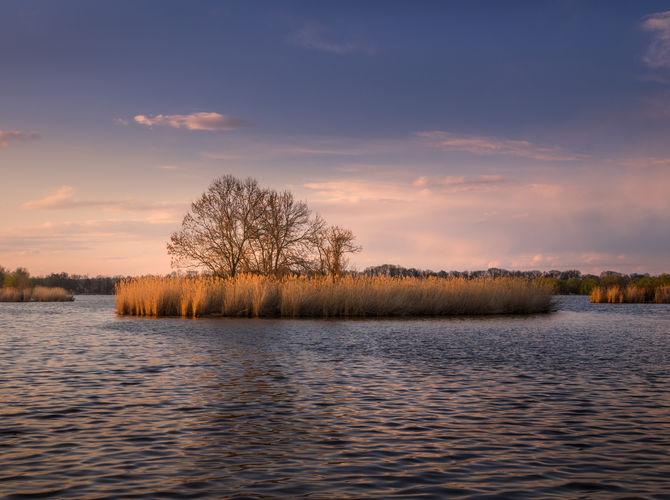 Podvečerní rybníkovka