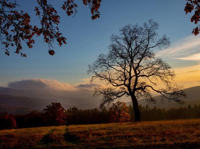 Podzimní Bílé Karpaty