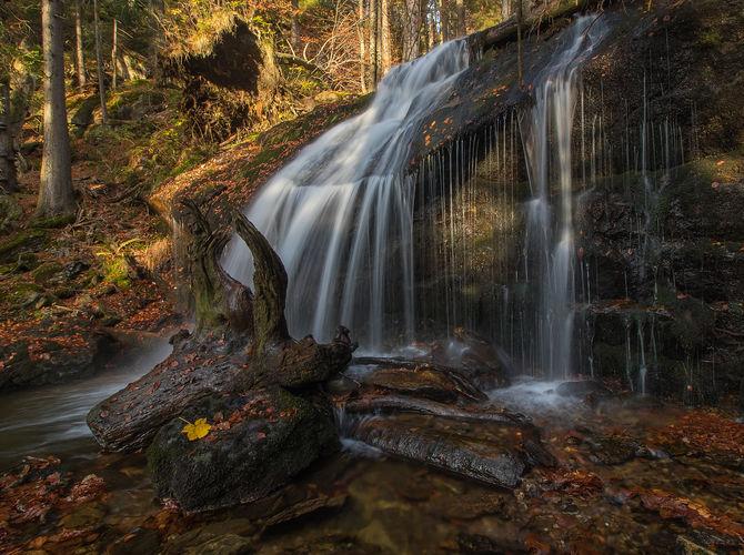 Voda Bavorského lesa