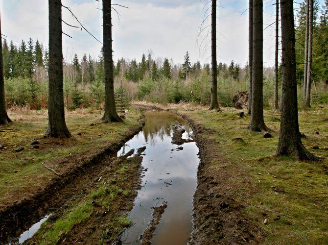 Zadržování vody v krajině