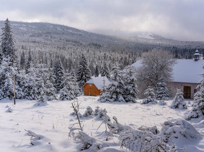 Šumava, sníh a mráz