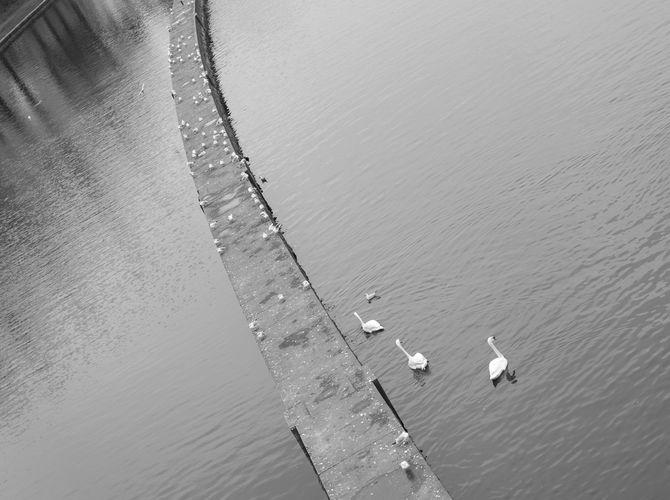 pohled z mostu Legií.....