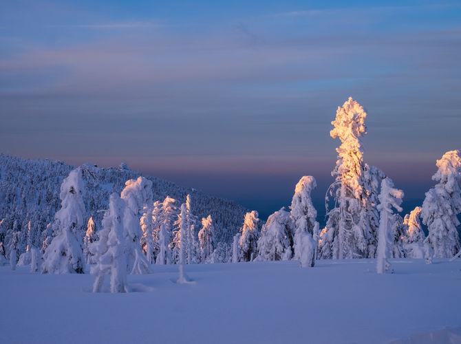 Zima na hřebenech Krkonoš v pozadí ptačí skály