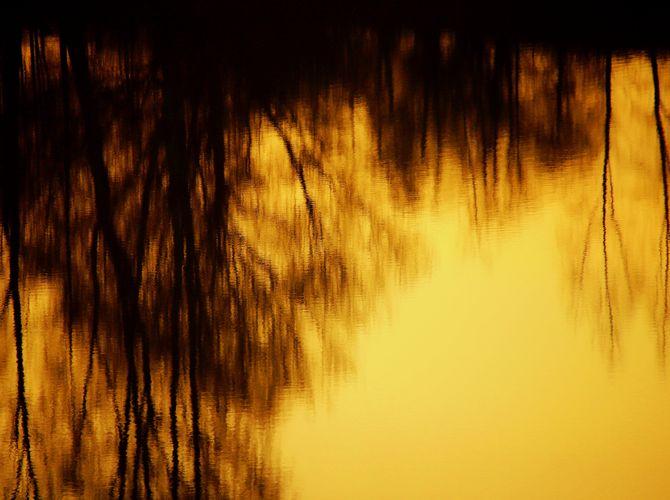 Večerní obraz na hladině rybníka