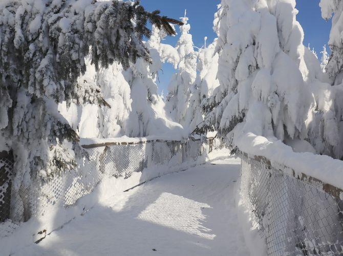 Zima na Dolní Moravě