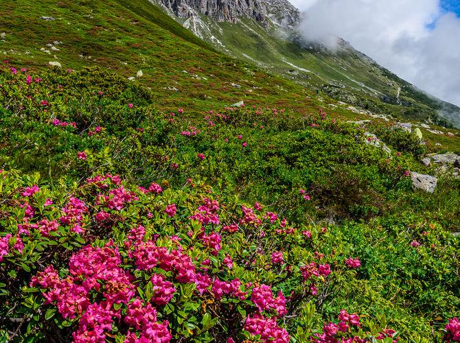 Elferspitze ve Stubaiských Alpách