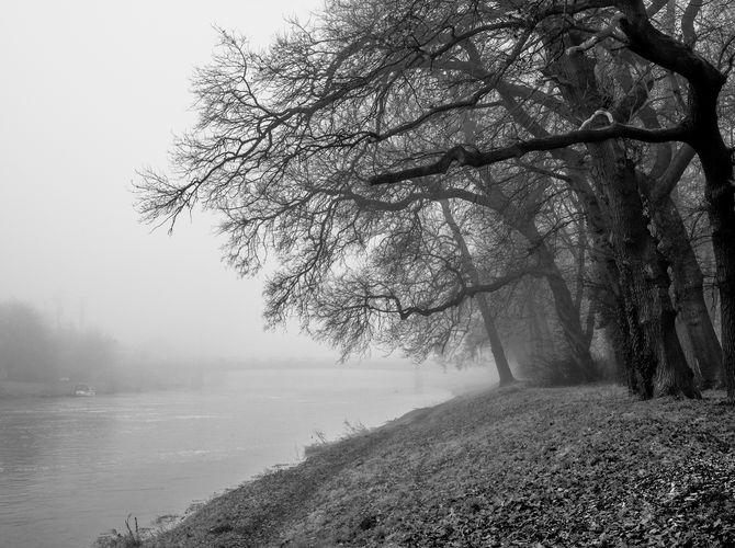 Tiché ráno u řeky