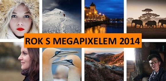 Vyhodnocení soutěže ROK S MEGAPIXELEM 2014