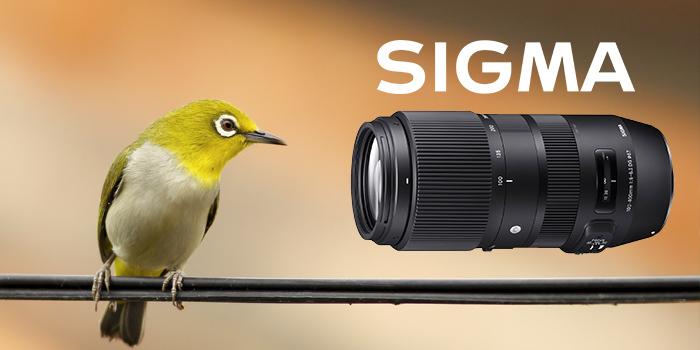 Nový teleobjektiv Sigma 100-400 f/5-6,3 DG OS HSM je skladem