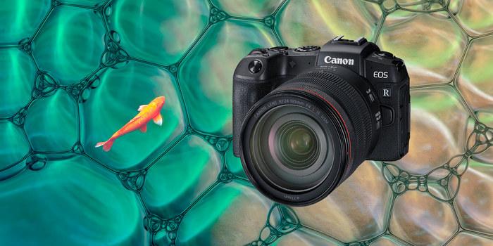 Využijte splátek bez navýšení a pořiďte si výhodně Canon EOS R nebo RP ještě dnes!