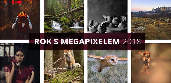 Přijďte na vyhlášení vítězů fotosoutěže Rok s Megapixelem 2017 a besedu s Janem Šibíkem