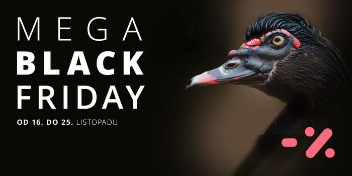 Mega Black Friday!