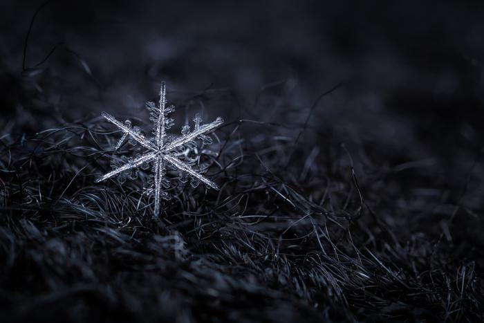 Jak na focení v zimě a nepříznivém počasí
