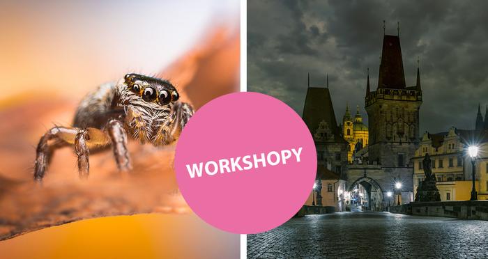 Přijďte na workshopy makra a noční architektury se Sony a Zeiss