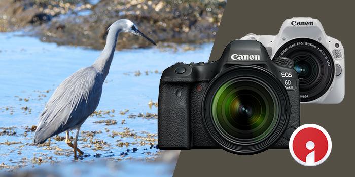 Pořiďte si Canon EOS 6D Mk II nebo 200D a získáte 100 GB ve službě Irista