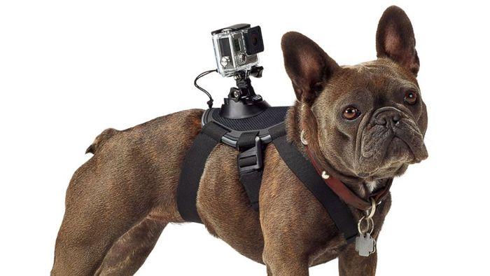 Přijďte si vyzkoušet sportovní kamery GoPro