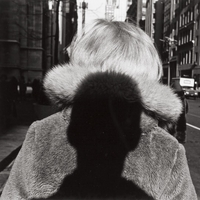 Medailon autora - Lee Friedlander