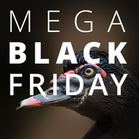 Mega Black Friday!