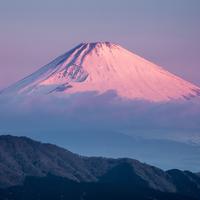 Japonsko s Martinem Rakem