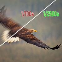 Jak fotit digitální zrcadlovkou (DSLR) a bezzrcadlovkou: 13. díl - PREFERENCE ČASU