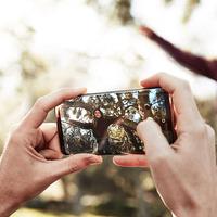Jak na výběr fotomobilu? Pozor na pixelovou past