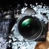 Novinka Olympus OM-D E-M1 Mark III pro milovníky divoké přírody a kvalitních fotek