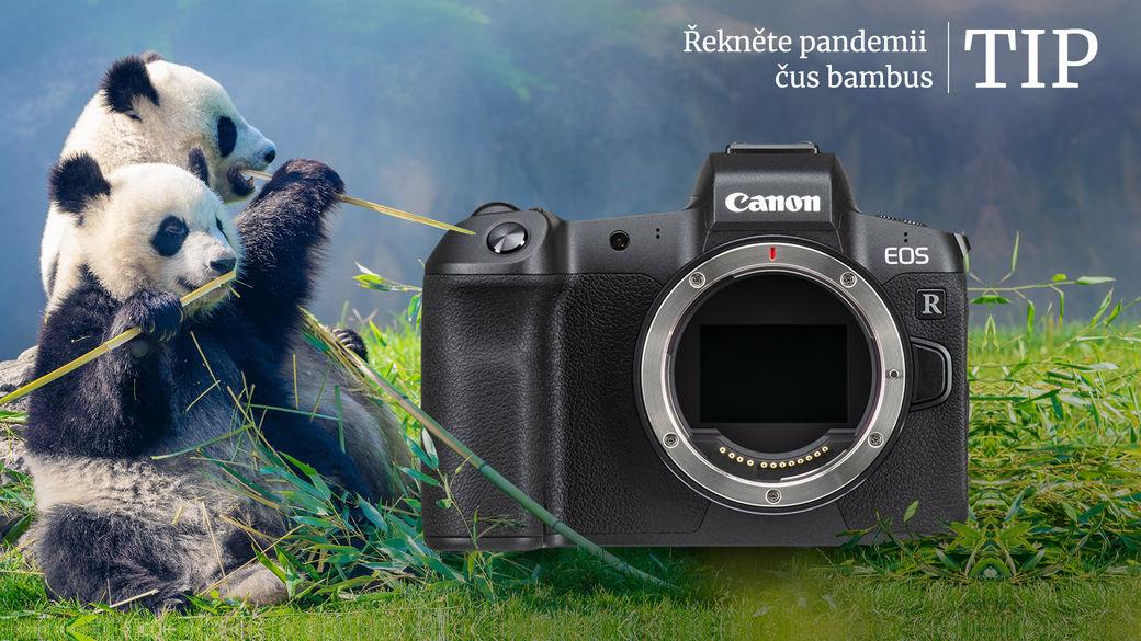 Megaléto tip č.1: Canon EOS R