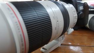 První dojmy z Canonu EOS 250D