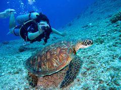 Jak fotit pod vodou