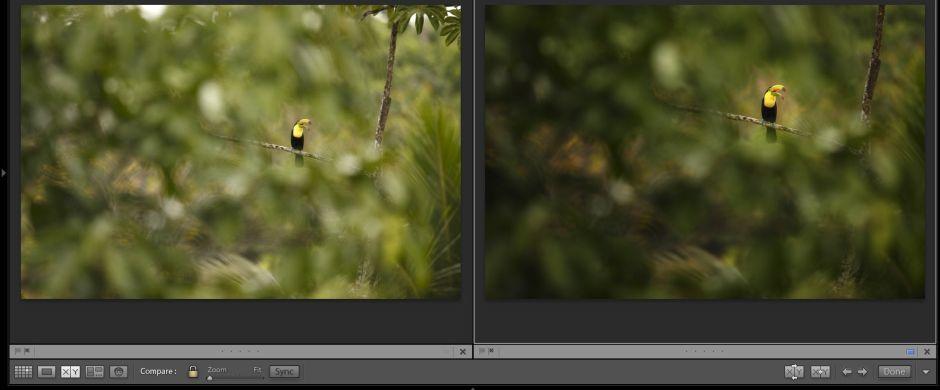Úpravy fotografií s Petrem Bambouskem