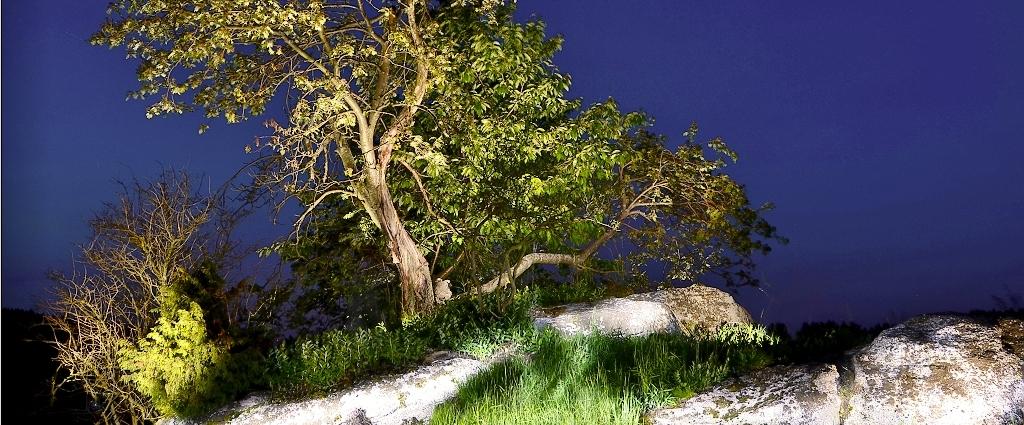 Kreativní noční fotografie
