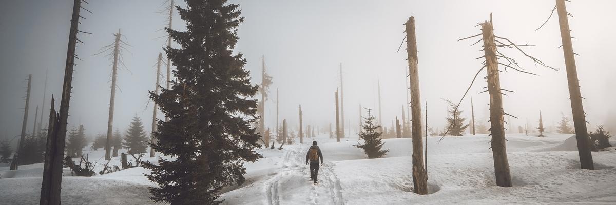 Instagram pro fotografy a influencery