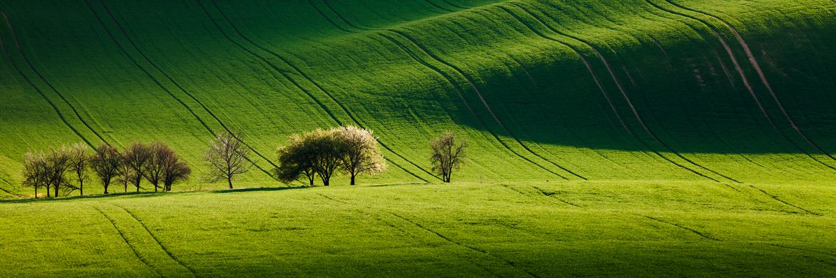 Zvlněné křivky Jižní Moravy