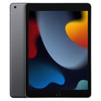 Apple iPad 256GB (2021) WiFi