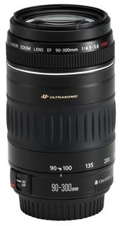 Canon EF 90-300 mm f/4,5-5,6 DC