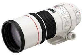 Canon EF 300mm f/4L IS USM a Extender EF 1.4x II
