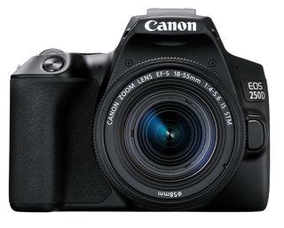 Canon EOS 250D + 18-55 mm IS STM + 50 mm f/1,8 STM černý - Video kit