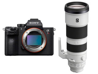 Sony Alpha A7R III +  FE 200-600 mm f/5,6-6,3 G OSS