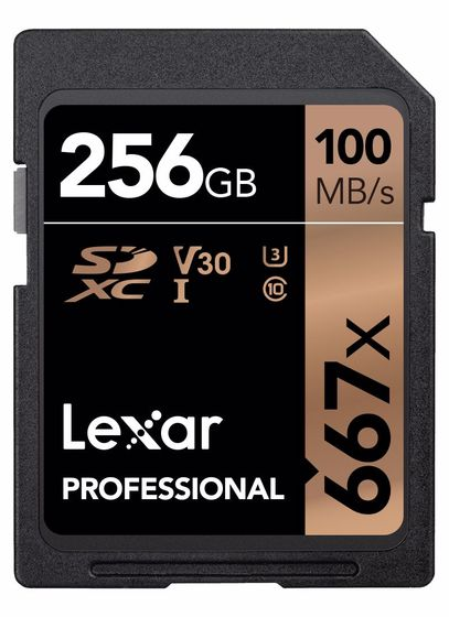 Lexar SDXC 256GB 667x Professional Class 10 UHS-I U3 (V30)