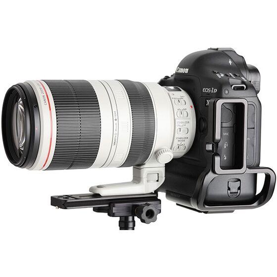 Canon EOS 1D X Mark II + Canon EF 100-400 mm f/4,5-5,6L IS II USM