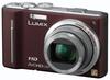Panasonic Lumix DMC-TZ10 hnědý