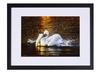 Fotoobraz Nielsen 30x40 cm Večerní koupel