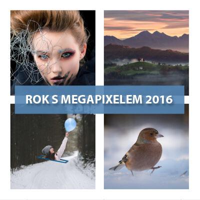 Vyhlášení vítězů soutěže ROK S MEGAPIXELEM 2016