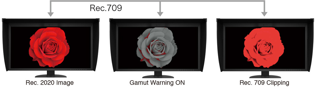 cg319x-gamut-warning-4b