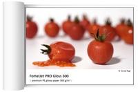 FomeiJet PRO Gloss 300 role 43,2cm x 25m