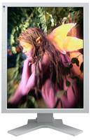 Eizo FlexScan L997 šedý + Zoner Photostudio 11 Eizo edition zdarma!