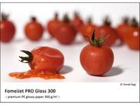 FomeiJet PRO Gloss 300 A3 (29,7 x 42cm)/50