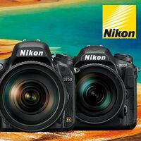 Sleva na nejoblíbenější zrcadlovky Nikon D750 a D500 až 5 500 Kč
