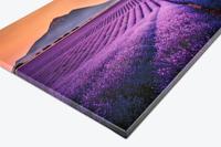 Fotoobraz na plátně 40×70 cm od nadšence